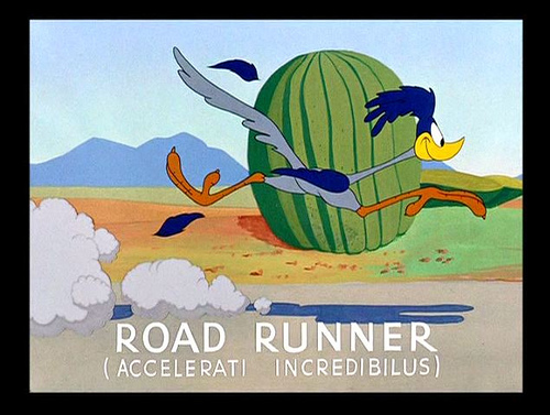 Wile E. Coyote Pursues Road Runner: The End