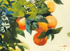 Winslow_Homer_-_Oranges_on_a_branch