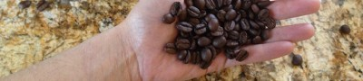 Russell Bennetts: Coffee for 8 More