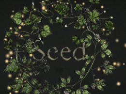 'SEED' by Joanna Walsh