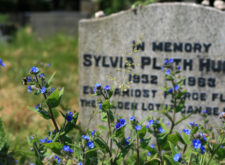 Plath's (Crystalline, Determined) Letters