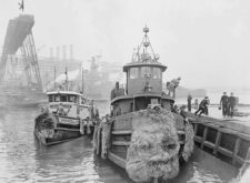Power and New York's Forgotten Waterfronts