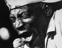 Howlin' Wolf: Booming Voice of The Blues