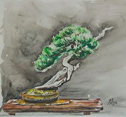 'Bonsai at the Potter's Stall' by Kay Mullen